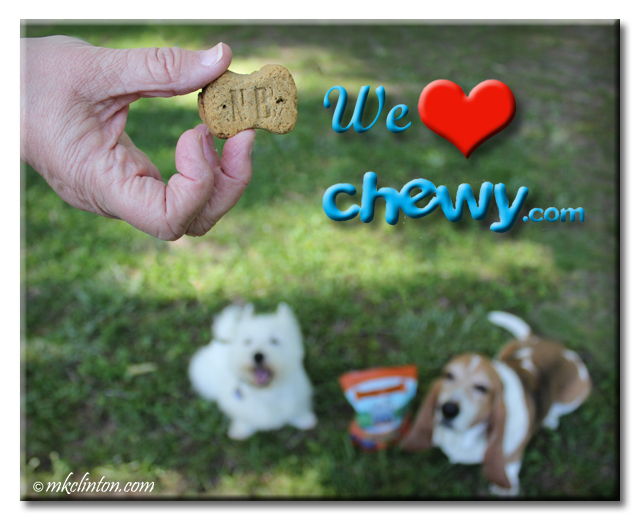 Basset Hound and Westie look longingly at Natural Balance LIT treats from chewy.com