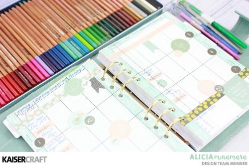 Kaisercraft Chirp Planner Set-Up By Alicia McNamara
