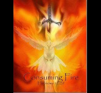 Consuming Fire of the Holy Spirit by Tammy Lang Jensen