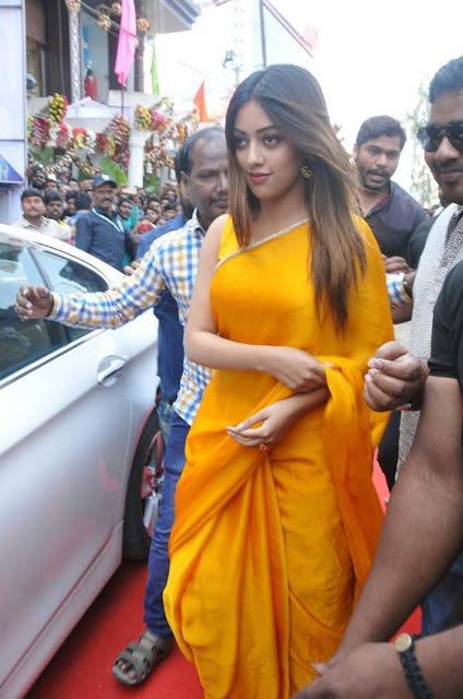 Anu Emmanuel Stills At KLM Fashion Mall Launch At Dilsukhnagar