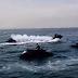 Εντυπωσιακό θέαμα με τζετ σκι στην παραλία Θεσσαλονίκης (video)