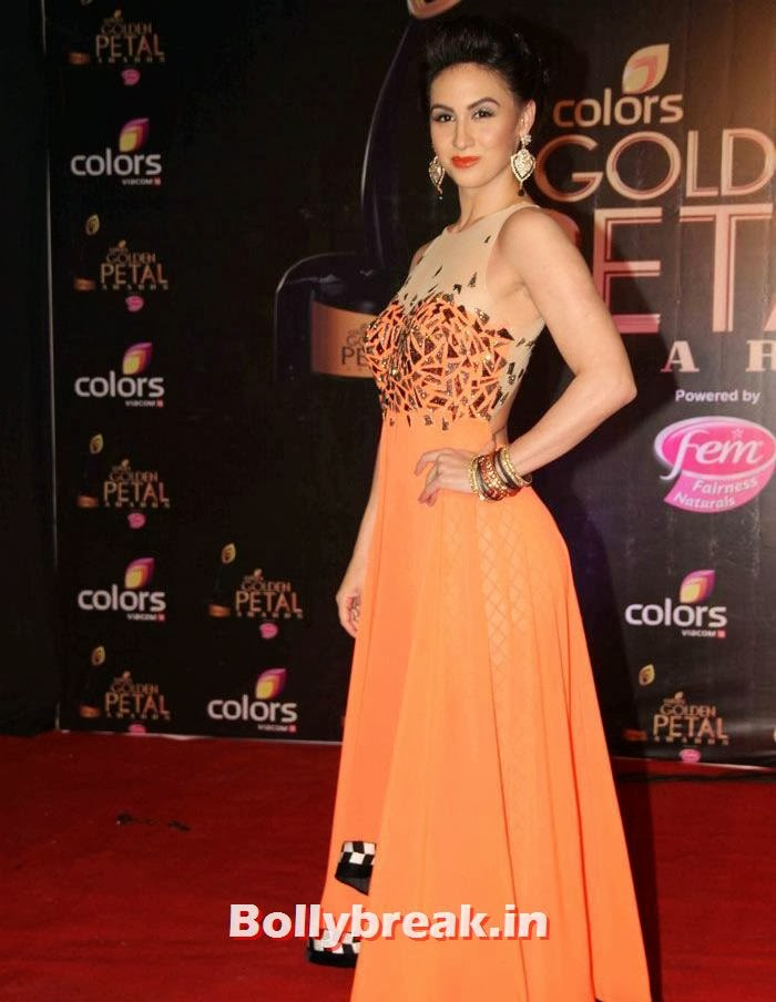 Lauren Gottlieb, Colors Golden Petal Awards Dec 2013 Photos