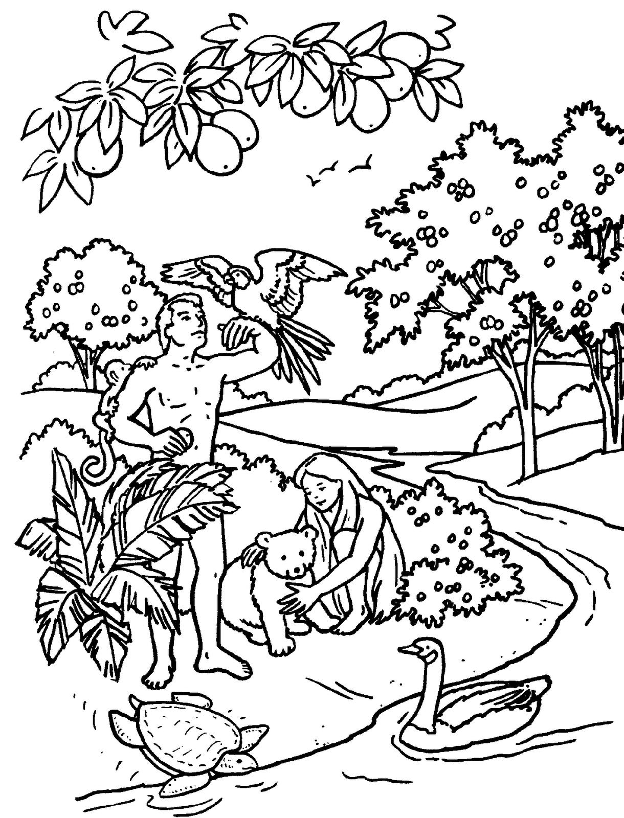Dibujos Para Colorear Y Coloreado De Adán Y Eva En El Huerto