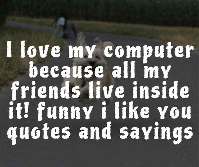 funny i like you quotes and sayings  Funny Inspirational Quotes and Sayings