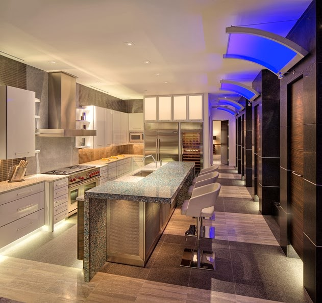 702 Hollywood Penthouse Kitchen Design