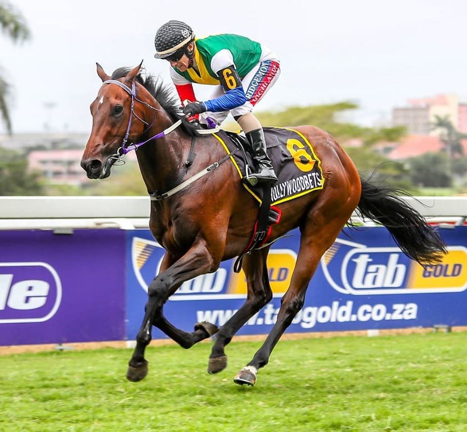 The horse MASTER VISION being ridden to victory by Anton Marcus at Hollywoodbets Greyville Racecourse