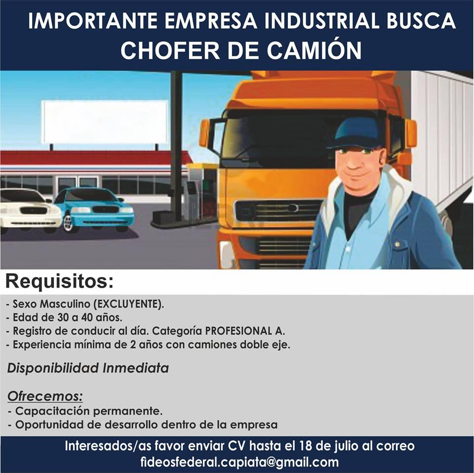Contemporáneo Conductor De Camión Reanudar Experiencia Ilustración ...