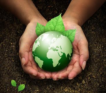 دور الاسلام في المحافظة على البيئة