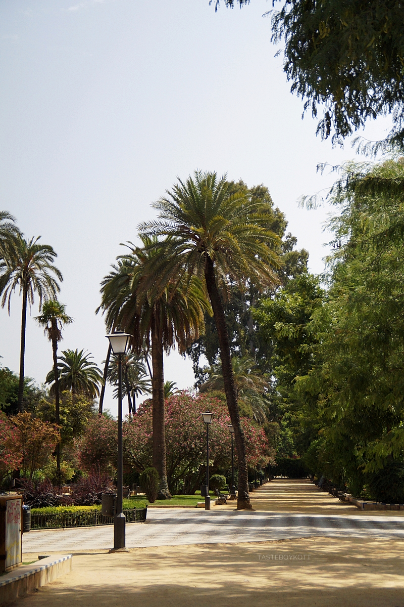 Parc in Seville, Spain, in summer // Park in Sevilla, Spanien, im Sommer
