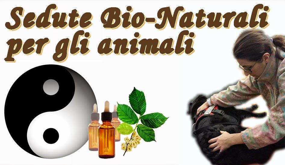 Metodi bio-naturali per gli animali