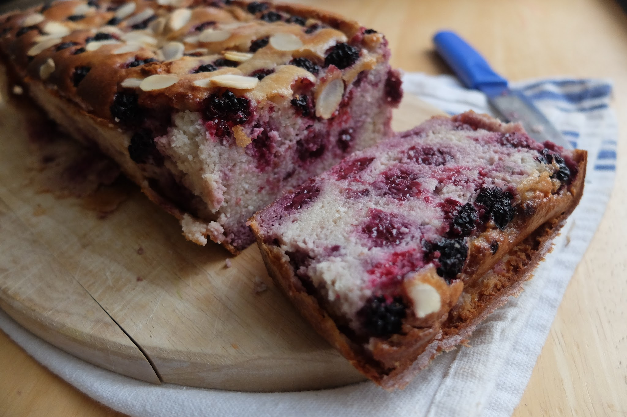Paleo/Ketogenic Blackberry, Coconut and Almond Cake Blackberries Recipe