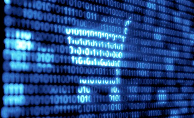 La Importancia de los Datos