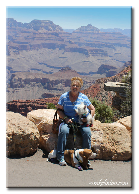 Basset Hound and Westie with M. K. Clinton at the Grand Canyon
