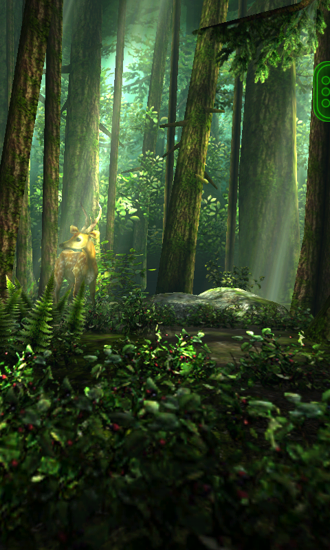 Haram World: Forest HD 3D Live Wallpaper For Android