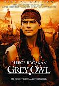 Búho gris (1999) ()