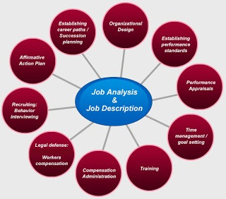 The Important Role Of Job Description Jd In Budding