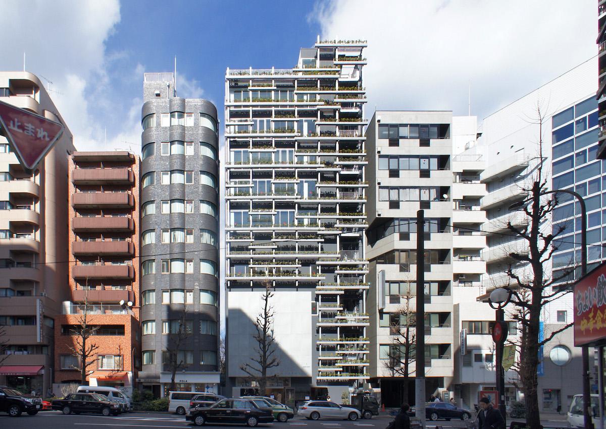 Japan cat sa cat - Divi builder 2 0 7 ...