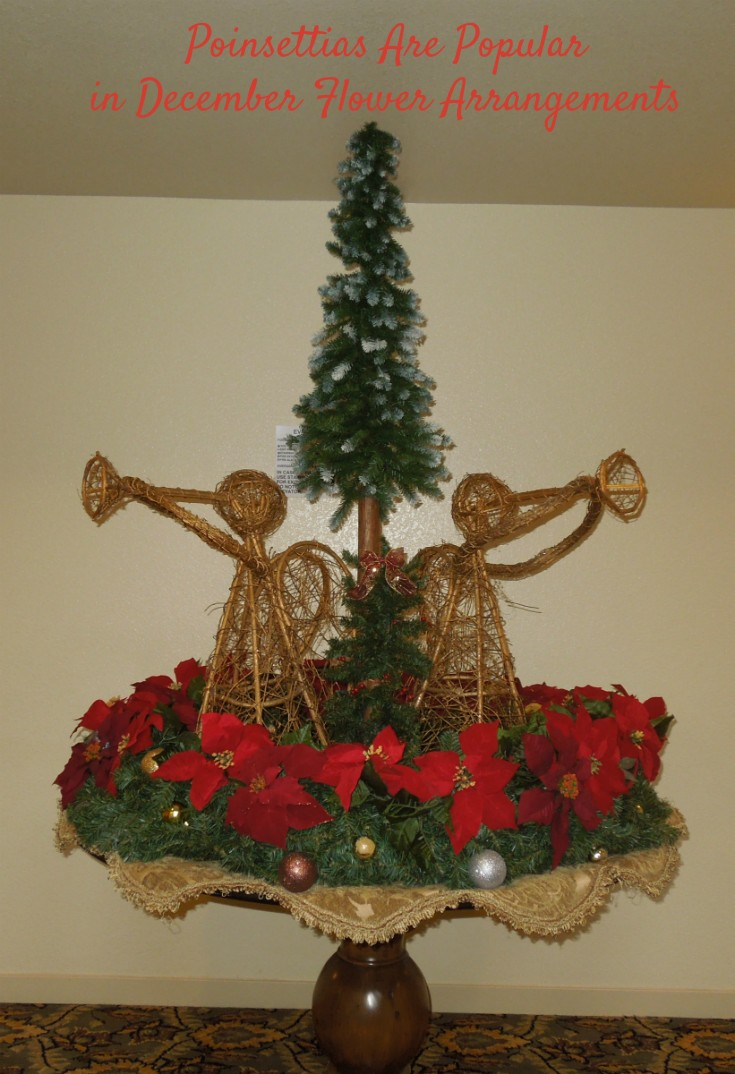 Poinsettias Are Popular in December Flower Arrangements