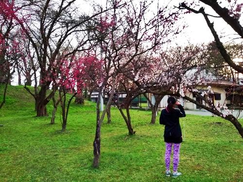 春のかおりに包まれ朝日も浴びてすっきり