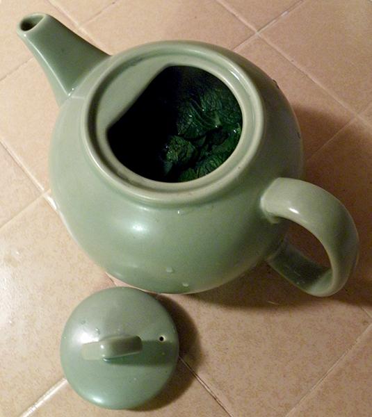 Fresh Mint in Teapot Steeping