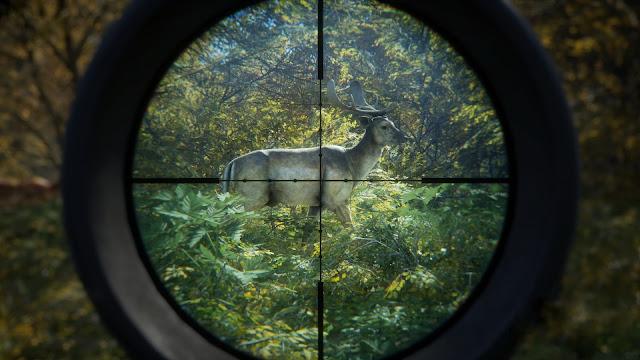 تنزيل لعبة صيد الحيوانات  the hunter call of the wildللكمبيوتر