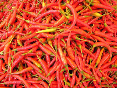Curly Red Chili Vegetables Business Opportunities