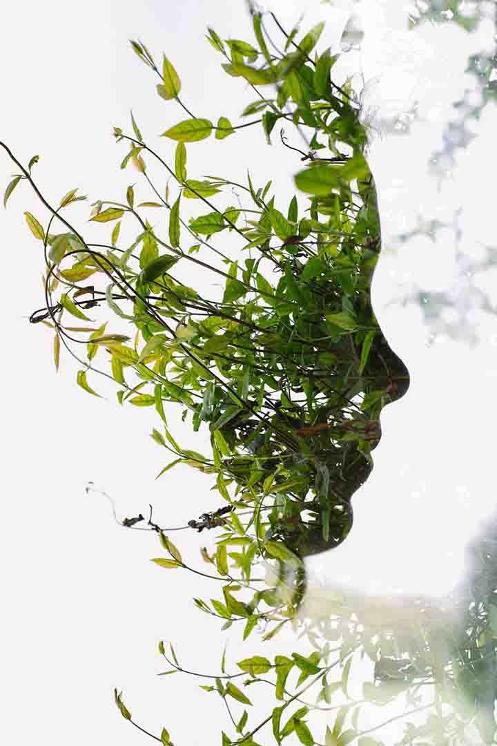 3 boyutlu bitki ve surat resimleri