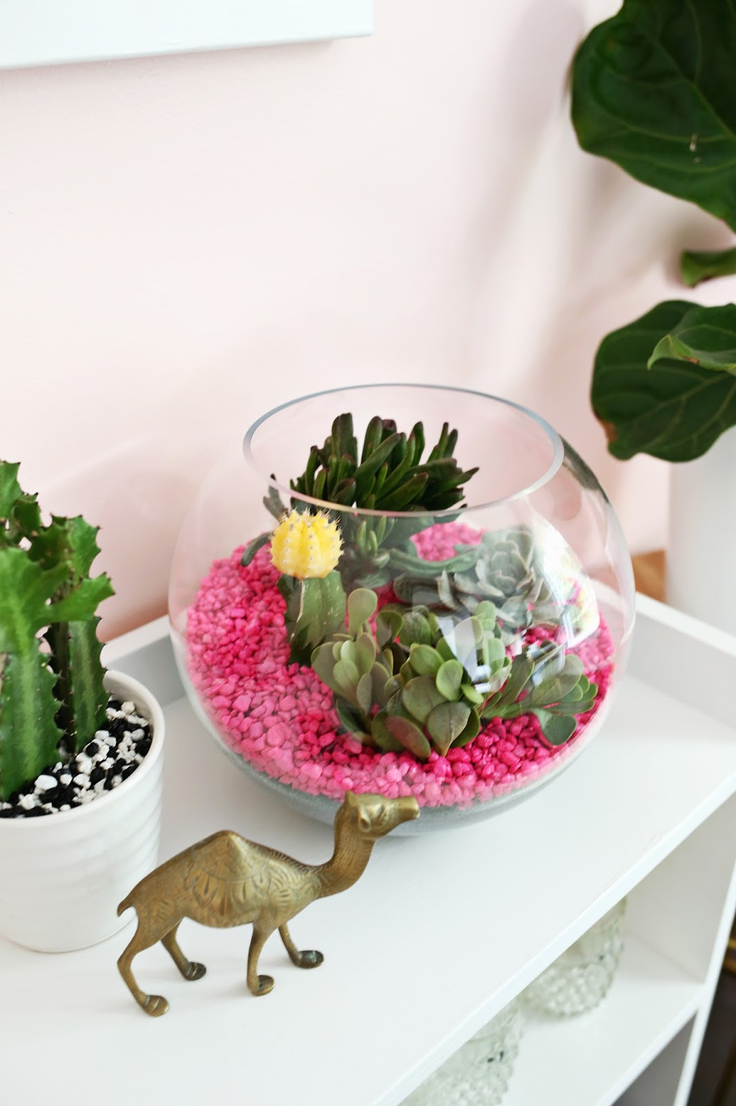 14 Ways to Display Succulents - Hot Pink Terrarium Pebbles
