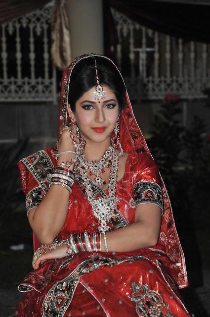 Sonarika Bhadoria's romance with Rajniesh Duggall has a new twist