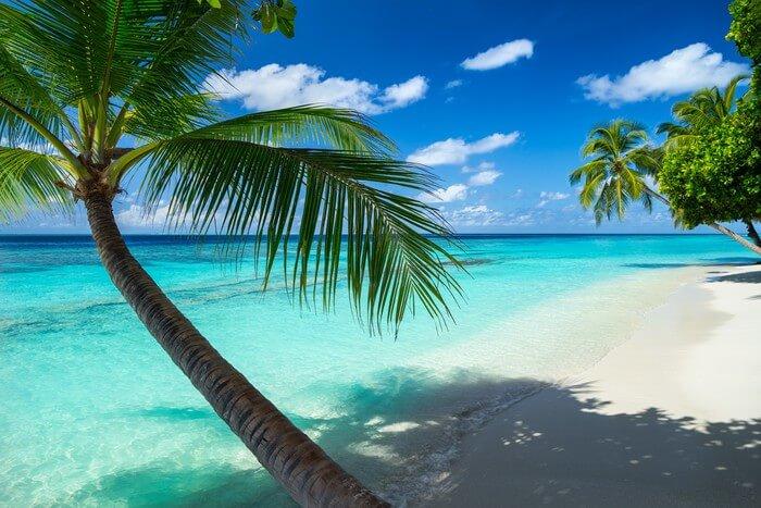 Apa Dan Dimana Terletaknya Negara-negara Oceania?