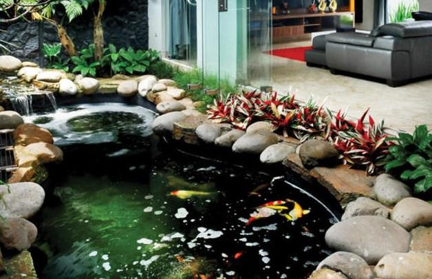 Tips Desain Kolam Ikan di Rumah Minimalis