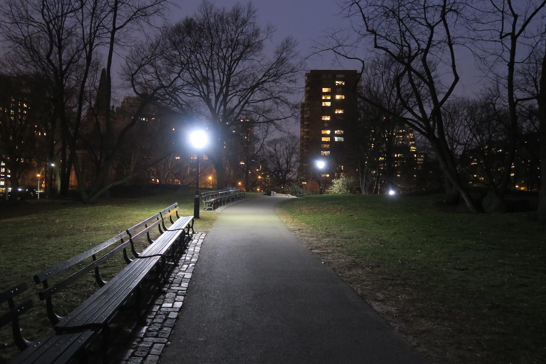 Night Dog Parks