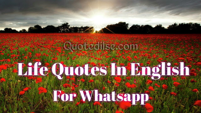 Life Quotes In English For Whatsapp