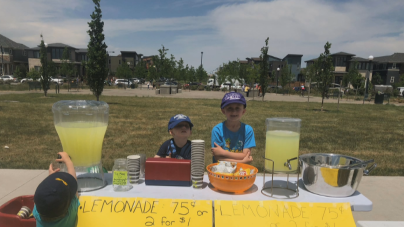 Child's Lemonade Stand Shut Down For Lack Of Permit