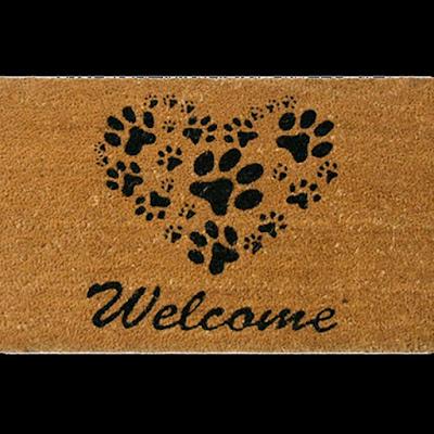 blog-abrir-janela-tapete-thedog