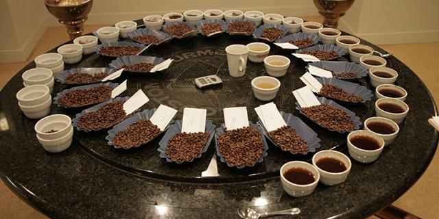 kahve tadimi yapimi, kahve gövde tadımı, Www.KahveKafe.Net