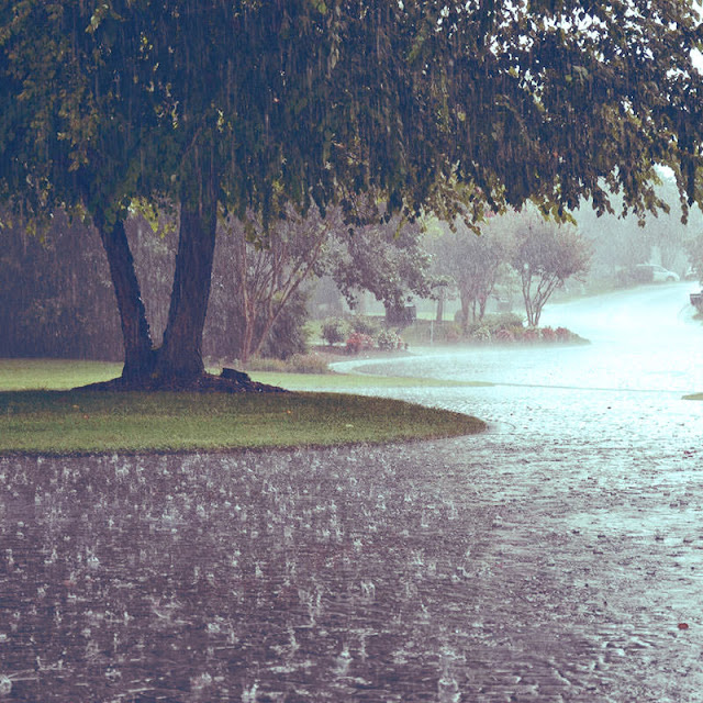 Doa Mohon Hujan [Arab, Latin, Arti, Audio] Sunnah
