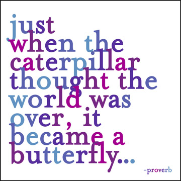 937a9cc7fcaf5 My Coolest Quotes  Just When the Caterpillar thought the World was ...