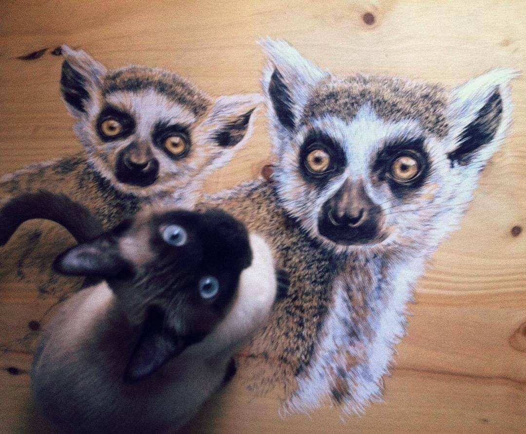 12-Lemur-and-a-Cat-Martina-Billi-Animal-Drawings-on-Recycled-Wooden-Planks-www-designstack-co