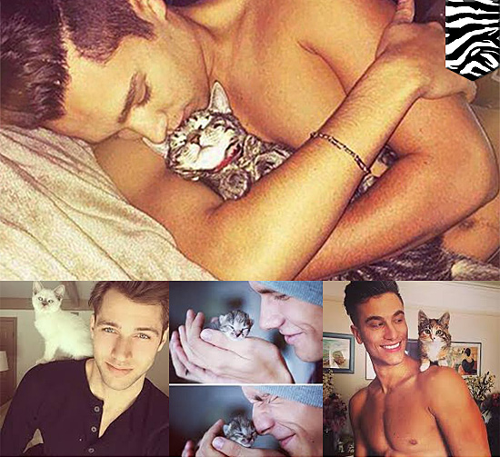 Hot Dudes with Kittens Instagram 3