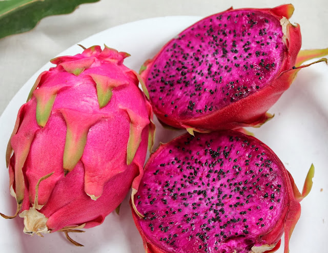 Buah naga merah tergolong jenis buah yang sudah tidak gres lagi di lingkungan masyarakat 50+ Khasiat dan Manfaat Buah Naga Merah Yang Luar Biasa