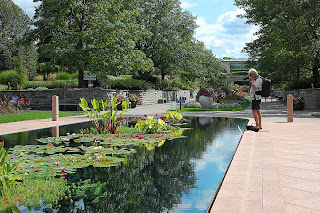 Reflecting Pond at Royal Botanical Gardens