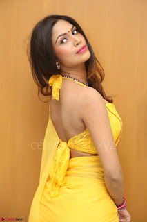 Nishigandha in Yellow backless Strapless Choli and Half Saree Spicy Pics 155.JPG