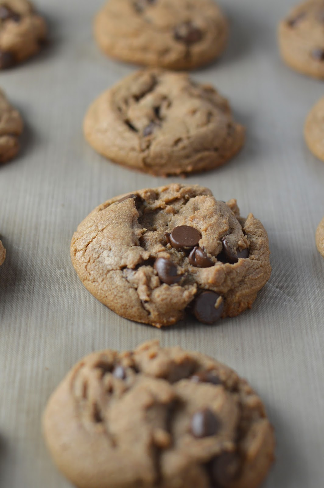 Soft Nutella Chocolate Chip Cookies | A Taste of Madness