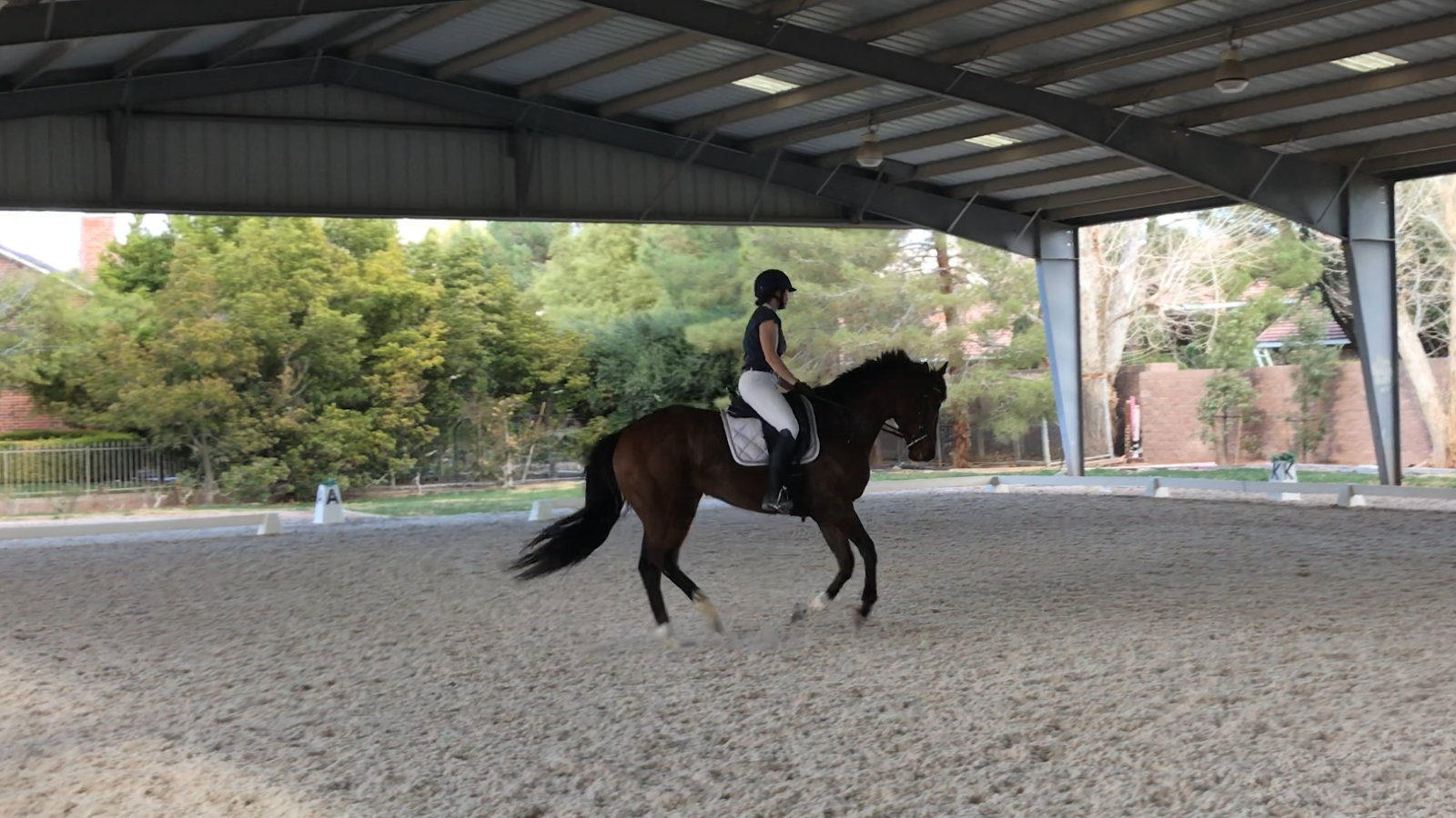 The Jumping Percheron: Total Saddle Fit Stability Stirrup Leathers