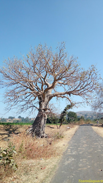 Mandu Ki Imli