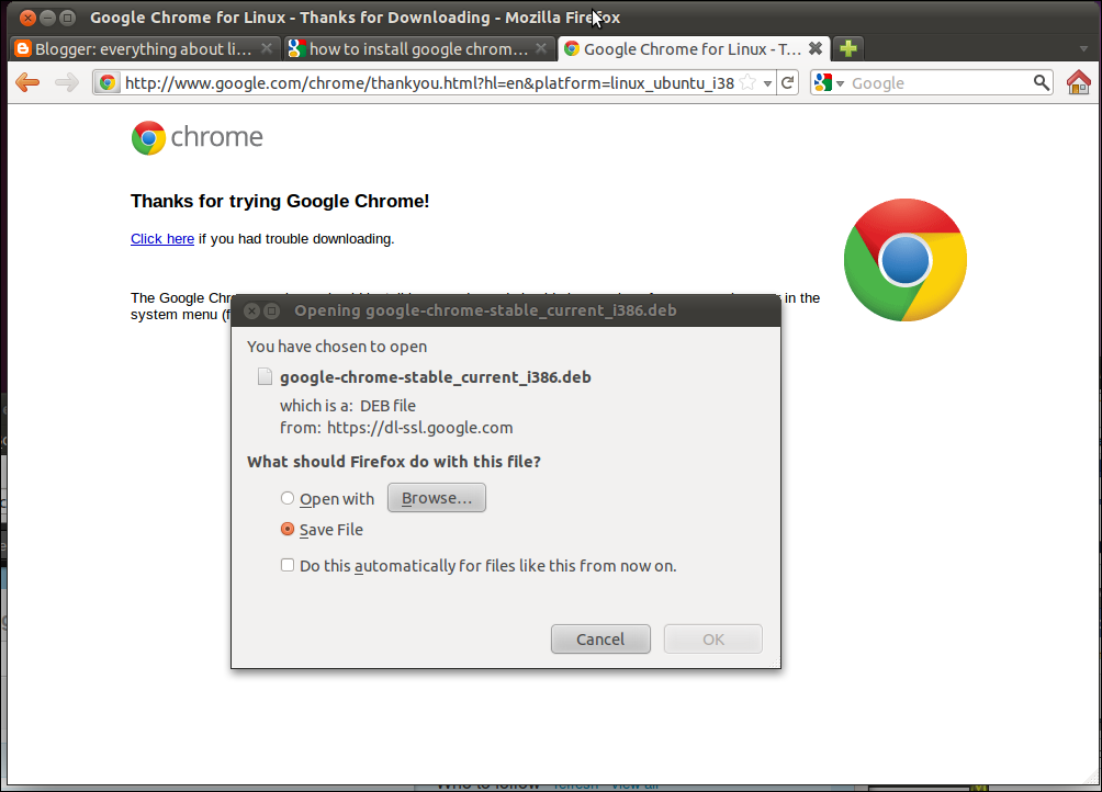 Everything About Linux: How To Install Google Chrome On Ubuntu 11 04