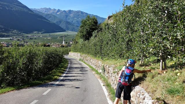 Bike Trails im Vinschgau