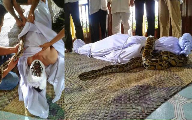 Image result for Subhanallah!! Akibat Tidak Membayar Zakat.. Mayat Ini Di Lilit Ular Ketika Di Kapankan!!
