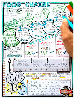kate s science classroom cafe visual learning doodle notes and memory